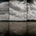 Triptych of summer fields with clouds come and gp
