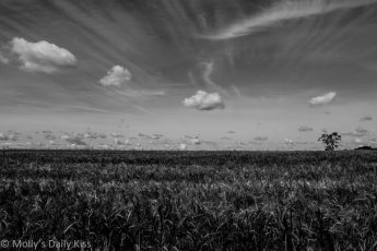 Clouds over fields in black and White contrasts