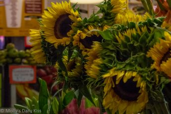 Sunflowers for sale at the market