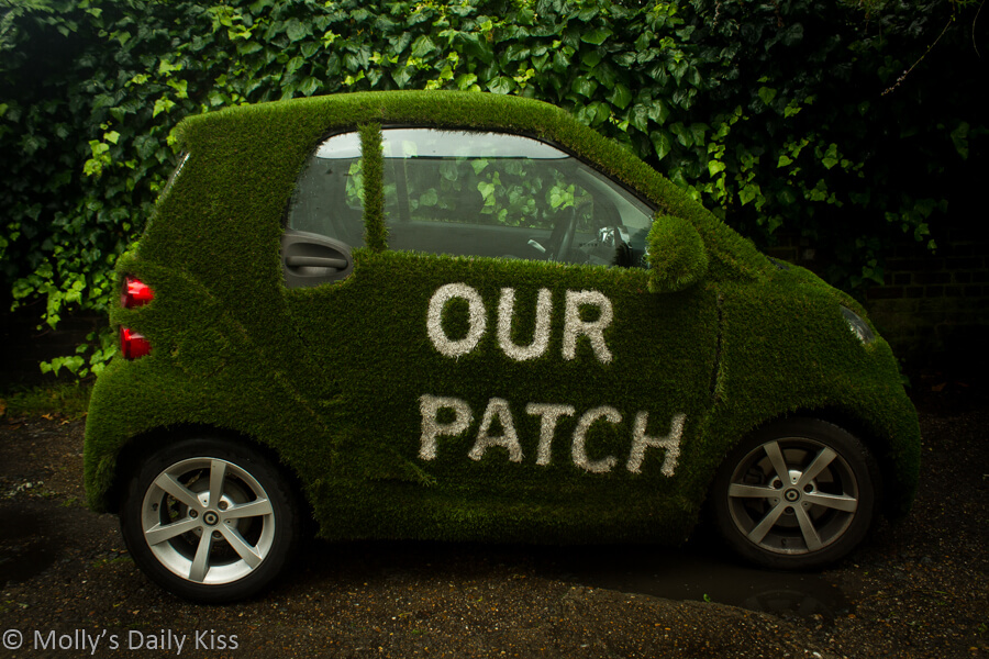 Car covered in grass our patch