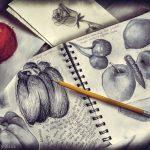 art pencil drawing of various fruit