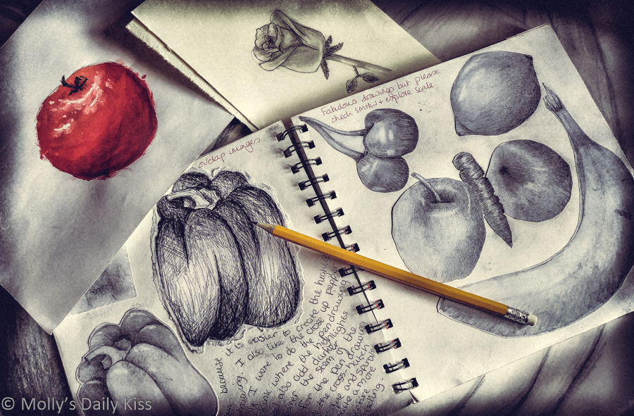 art pencil drawing of various fruit