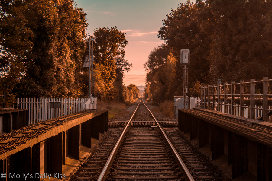 autumn mellow colours down the train track