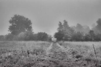 Foggy morning over fields in black and white, beautify