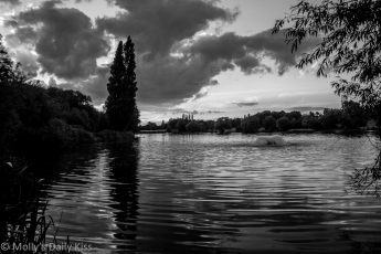 Black and white shapes of stanborough lakes