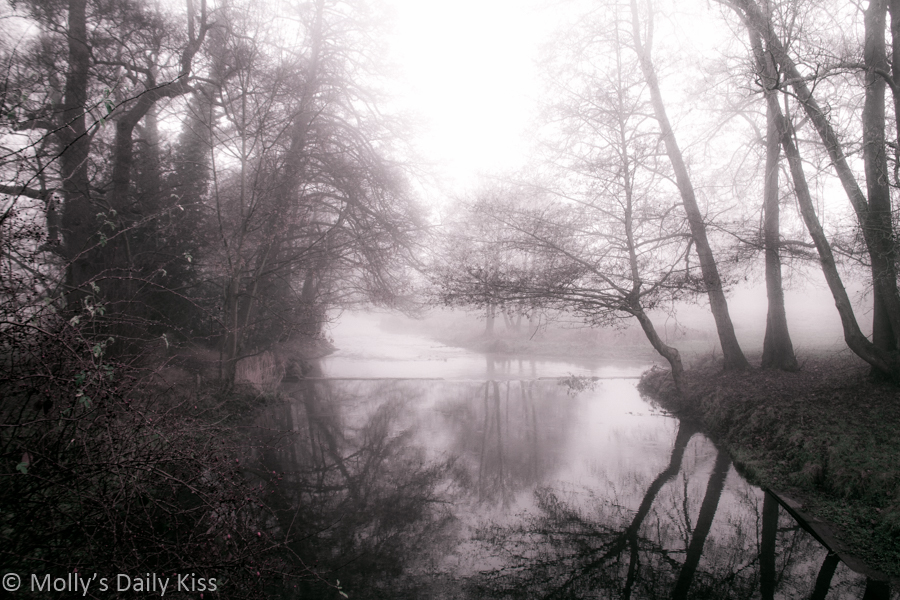 Reflection of trees in river with winter fog