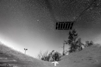 black and white of drain in a puddle that looks like a starry sky. New Dimension