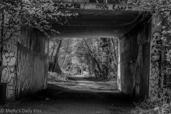 Tunnel on path footpath through London in black and white