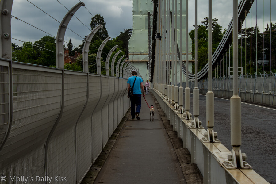 Man walking across Clifto Suspension Bridge with his dog
