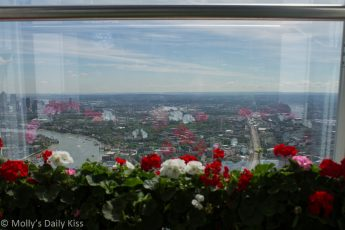 Flowers in the Shard reflected in the window with view of east london in the distance
