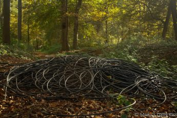 cables dumped in woodland looks like art
