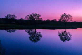 Purple pink sunset over water