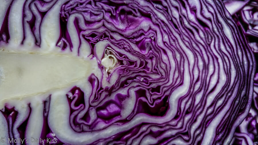 Red cabbage patterns