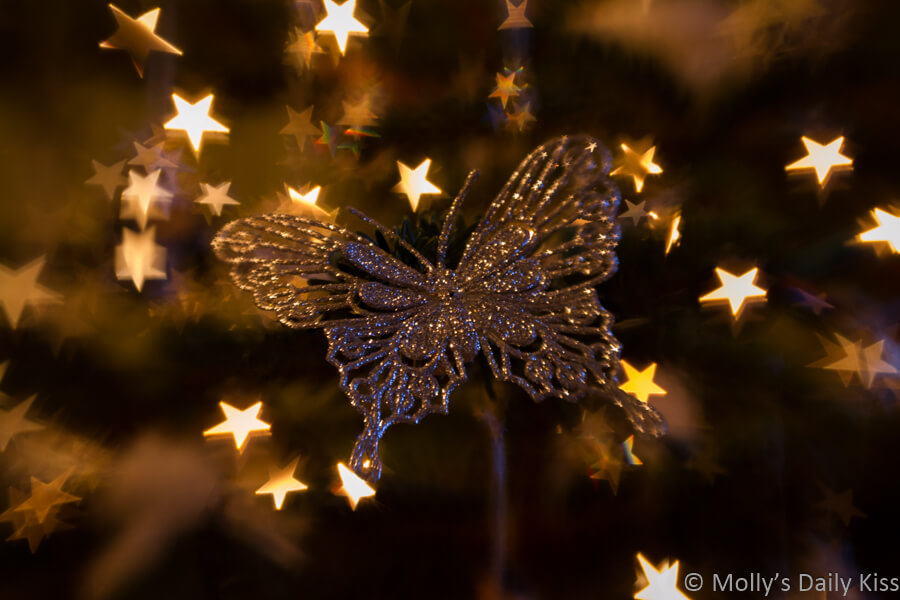 Christmas butterfly decoration with bokeh stars