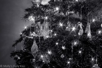 Black and white of Christmas tree with stars lights