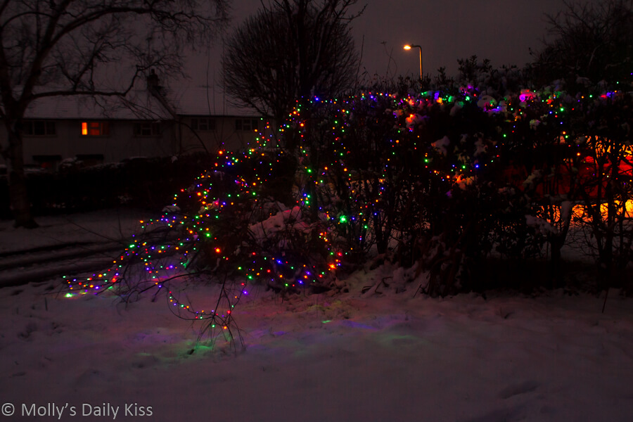 Christmas outside lights sparkle in the snow