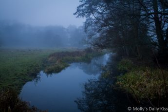 Trees reflection in stream on cold misty winter day