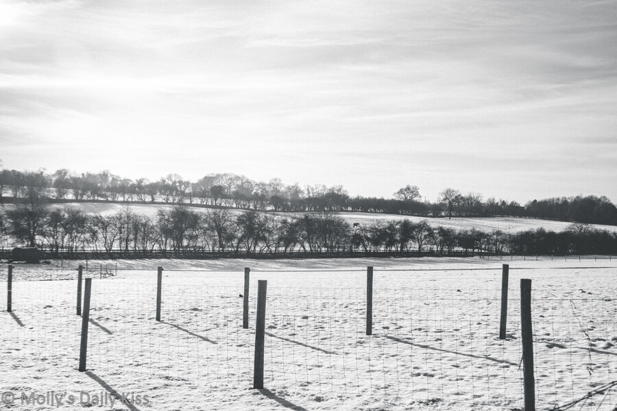 Whiteness of snow covered fields in black and white