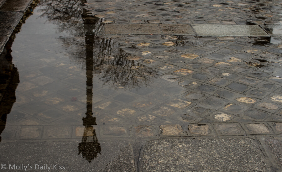 Paris street lamp reflected in puddle
