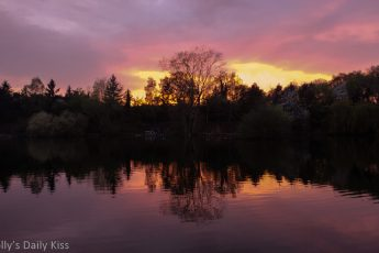 Beautiful sunset reflected in water