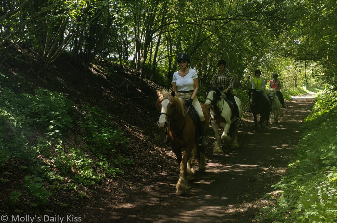 row of woman on horseback out enjoying a ride on the hoof