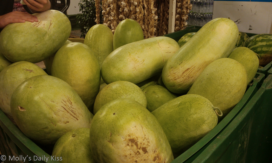 Ginat watermelon on stand