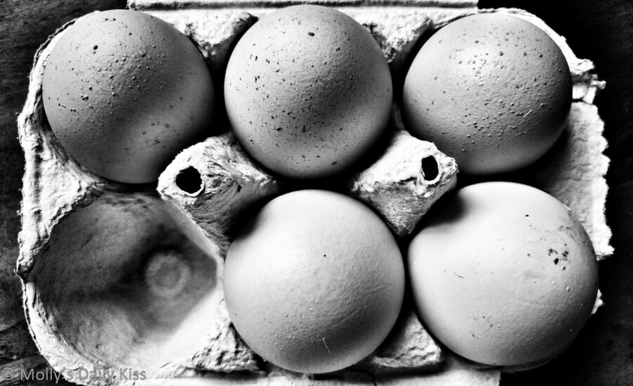 black and white of a box of eggs with one egg missing