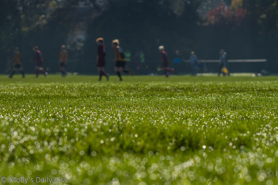 Boys playing football with morning dew shining on the grass