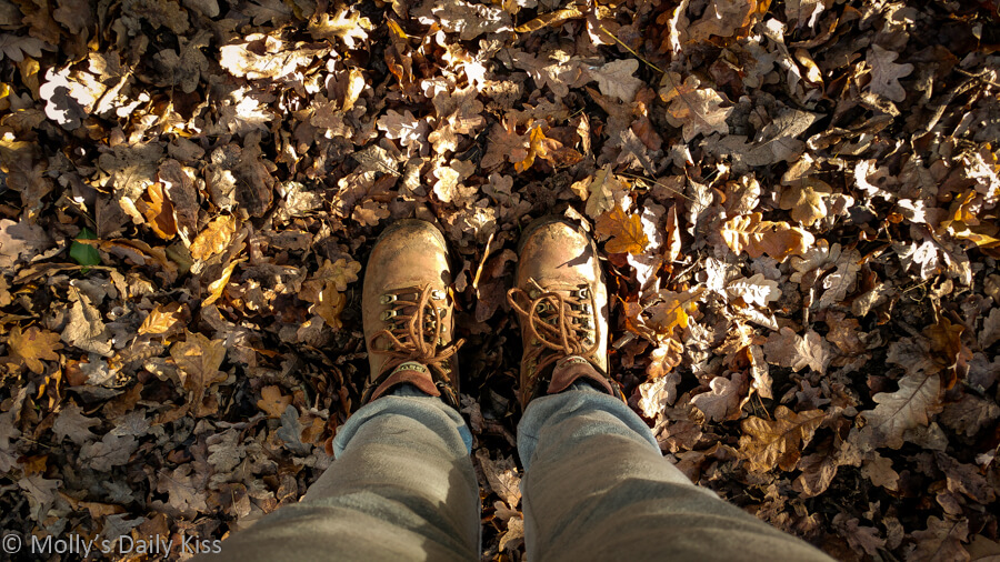 looking down legs to walking boots in autumn leaves