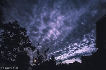 Spooky dusk sky with shades of purple over houses and trees