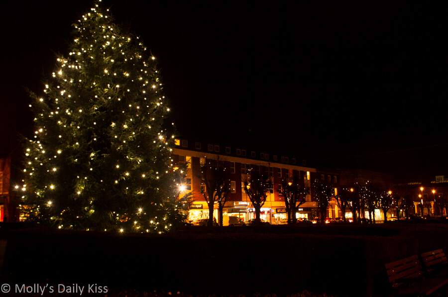 Large christmas tree in town centre with shop lights behind it