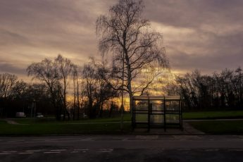 Sunset over winter trees and bus stop