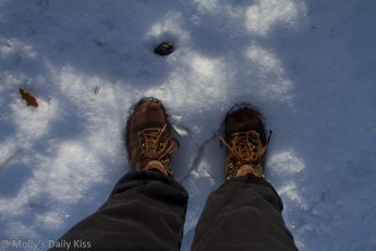 molly's legs and walking boots in the snow