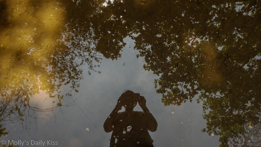 Reflection of molly in a puddle with trees around her