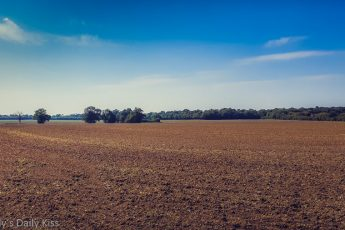 Ploughed field with blue skies