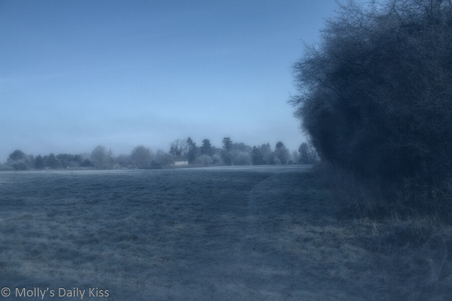 winter view over fields of misty frost