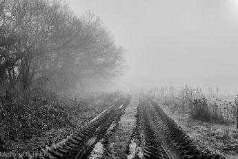 looking dorn tractor ruts through mists over fields