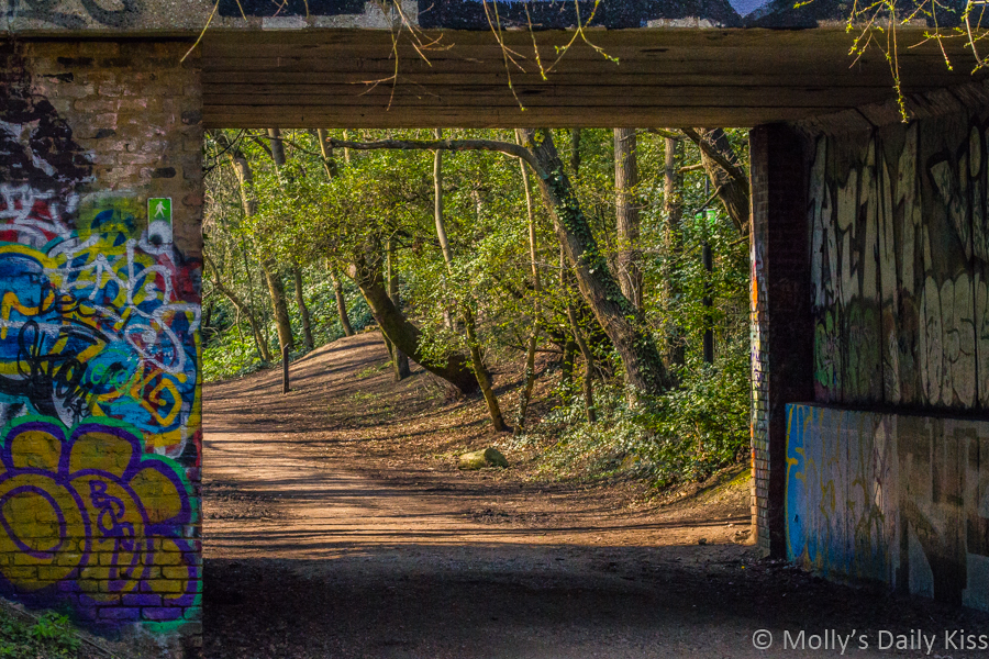 looking through tunnel covered in graffiti to spring trees