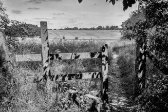 tranquillity fields beyond stile in the countryside