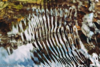 water ripples in stream are wisdom of nature