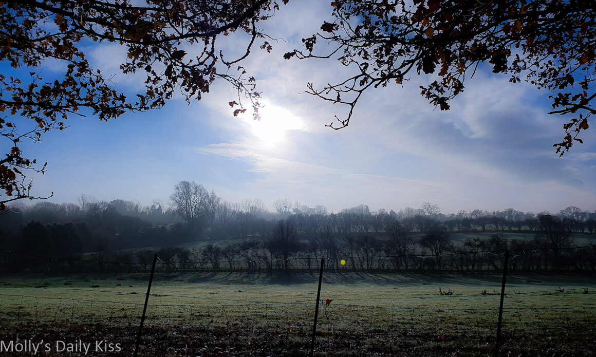 Frosty cold winter morning