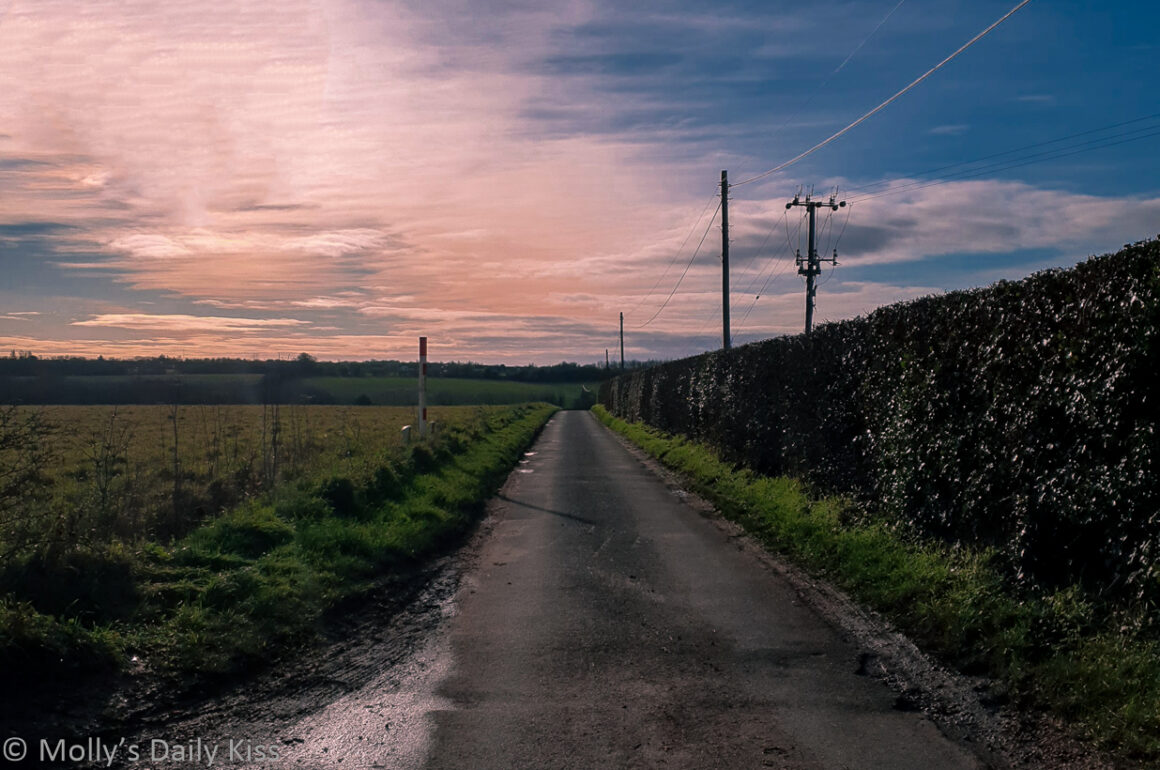 Looking down country lane to pink gilt sky sunset