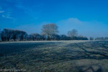 Blue sky on cold frosty morning