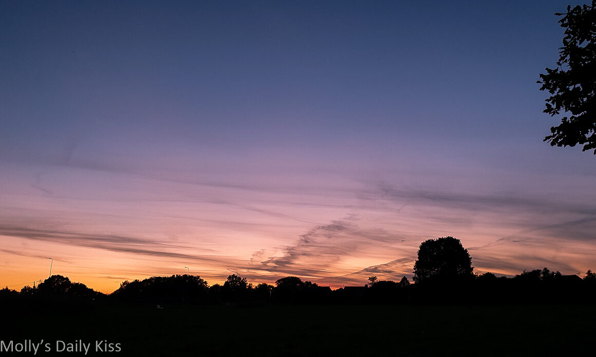 sunset over trees with whispy clouds against golden purple sky