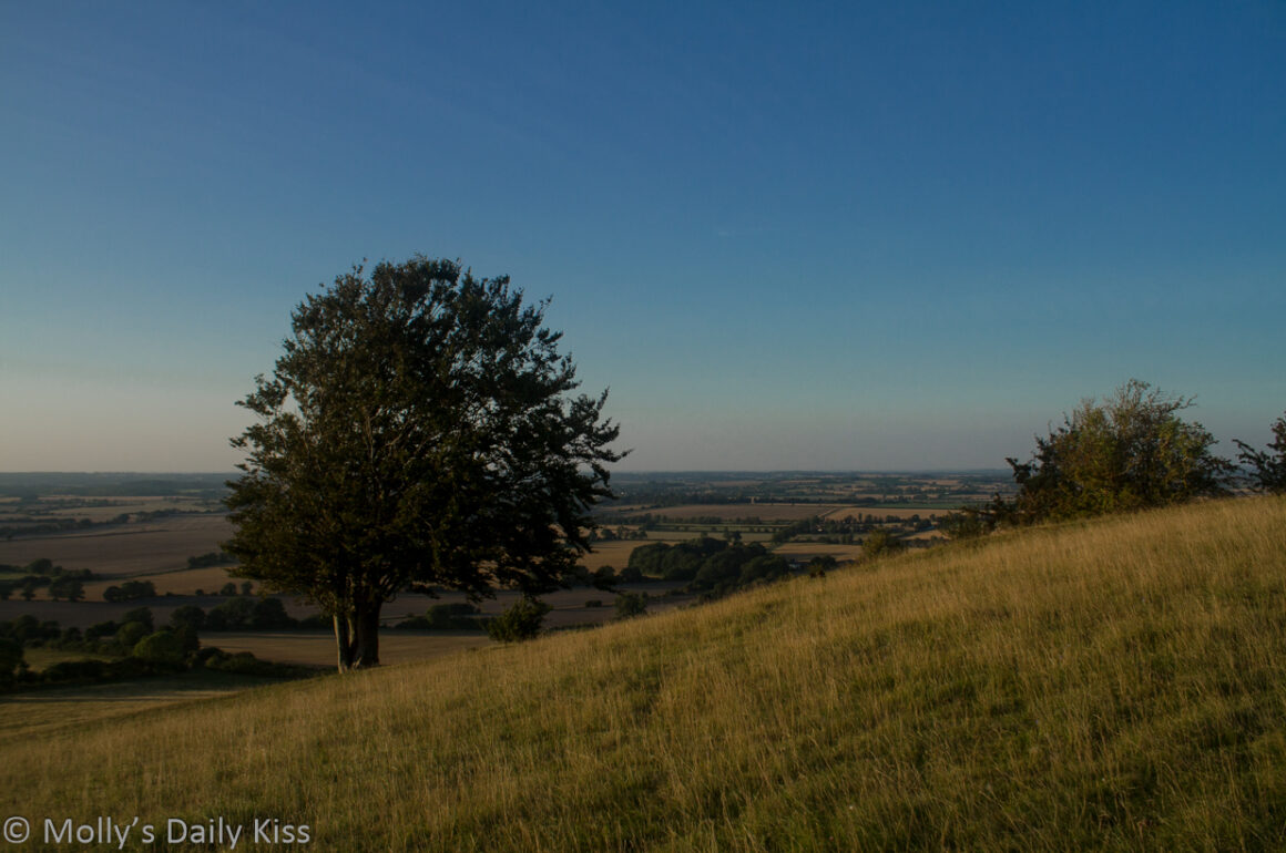 Looking out over Hertforshire countryside from Pegsdon Down